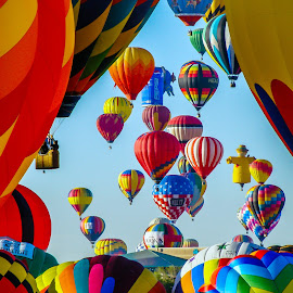 Morning launch by Ruth Sano - Transportation Other ( balloon fiesta, albuquerque, launch, balloons, hot air balloons, new mexico )