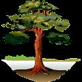 Trees APK for Bluestacks