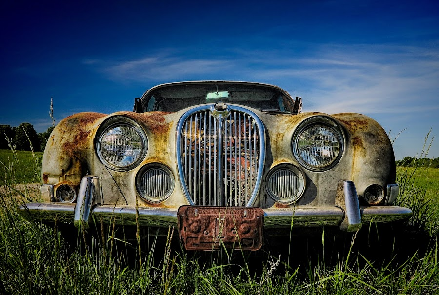 Jag Grille by Ron Meyers - Transportation Automobiles