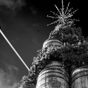 JDB&W by Worowsky Papa - Public Holidays Christmas ( b&w, tree, jack daniel, christmas, barrel )