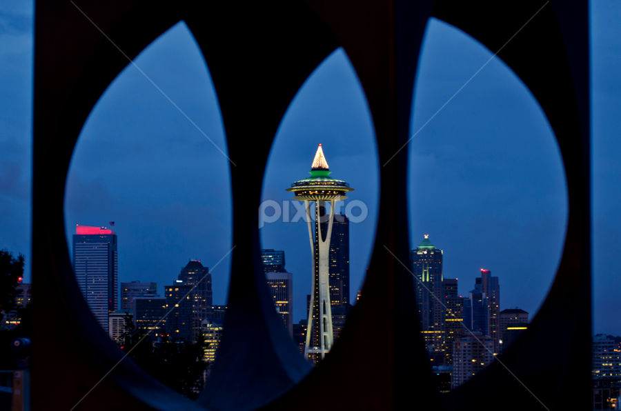 Seattle - a Different view by Ro Ducay - City,  Street & Park  Skylines