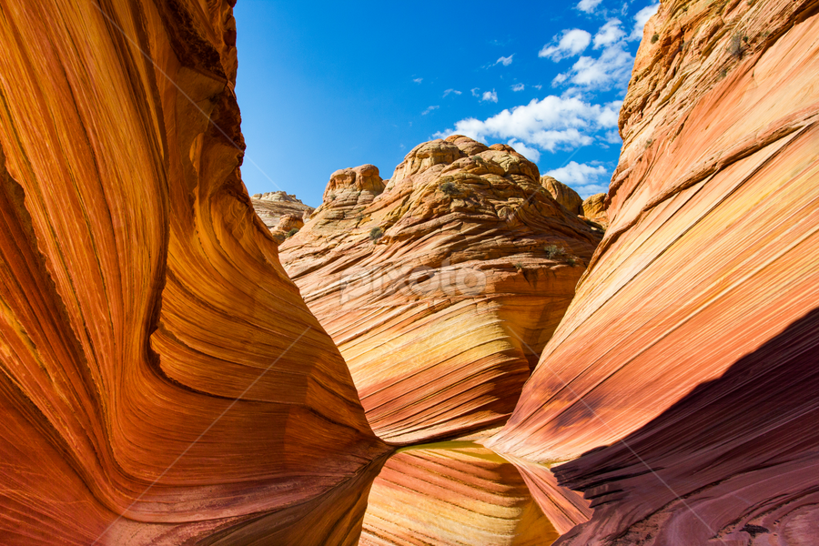The Wave, Arizona by Francesco Riccardo Iacomino - Landscapes Caves & Formations ( jurassic-age navajo sandstone, coyote buttes, dunes, reflection, oasi, erosion, land, natural pattern, stone, calcifying, rock, remote, colorado plateau, usa, curves, hiking, navajo, paria canyon-vermilion cliffs wilderness, symmetrical, jurassic, nature, arizona, southwest, sandstonec, rock formation, geological, coyote buttes north, desert landscape, sand, wild, desert, undulating, the wave, cnyon-vermilion, canyon, reflections in water, paria, united states, wilderness, ridges, red, rock formations, utah, lines, square, symmetry, natural, small ridges )
