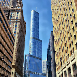 Trump Tower - Chicago by Tricia Scott - Buildings & Architecture Office Buildings & Hotels ( crosswalk, building, tower, street, architecture, chicago, people, trump )