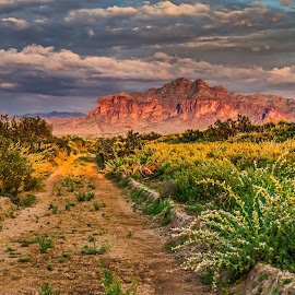 Superstition Mountain by Rita Taylor - Landscapes Mountains & Hills ( desert, mountain, sunset, clouds berm,  )