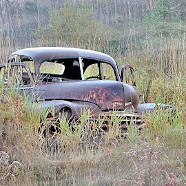 Abanded by Bob Bissonette - Transportation Automobiles ( automobiles )