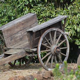 the old cart by Karen Goeman - Transportation Other ( old, cart )