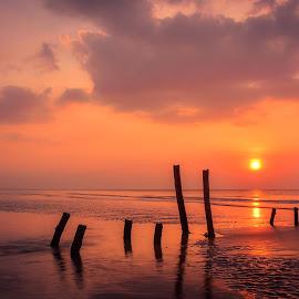 by Joy Advent - Landscapes Sunsets & Sunrises ( slowspeed, reflection, waterscape, sunset, indonesia, rembang, bridge, sunrise, landscape, photography,  )