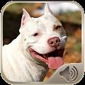 App Barking Dog Sounds apk for kindle fire