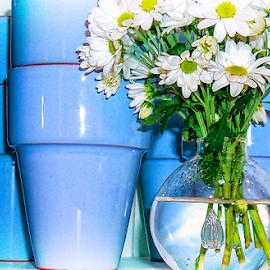 blue by Lennie Locken - Artistic Objects Still Life