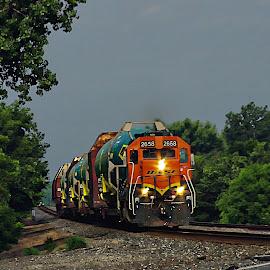by Karen McKenzie McAdoo - Transportation Trains