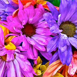 { Flowers ~ From The South East Gate }  by Jeffrey Lee - Flowers Flower Gardens ( { flowers ~ from the south east gate } )