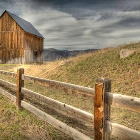 Woody Creek Barn by Tom Cuccio - Landscapes Prairies, Meadows & Fields ( fence, barn, colorado, landscape, woody creek, aspen )