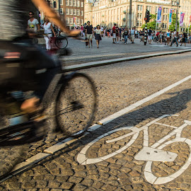 Hit From Behind by George Nichols - Transportation Bicycles ( bike lane, europe, street, wheels, amsterdam, blur, road, people, bicycle, lane, bike, shadow, square, motion,  )