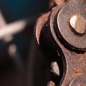 Chains of a Bike by Nick Massar - Transportation Bicycles ( bike, chain, nickolasmassar )