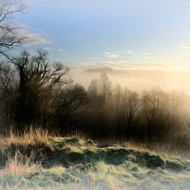 Sunrise over distant River Ayr by Stephen Crawford - Digital Art Places ( dawn, bushes, editing, trees, sunrise, oil painting, digital, filter, annbank,  )