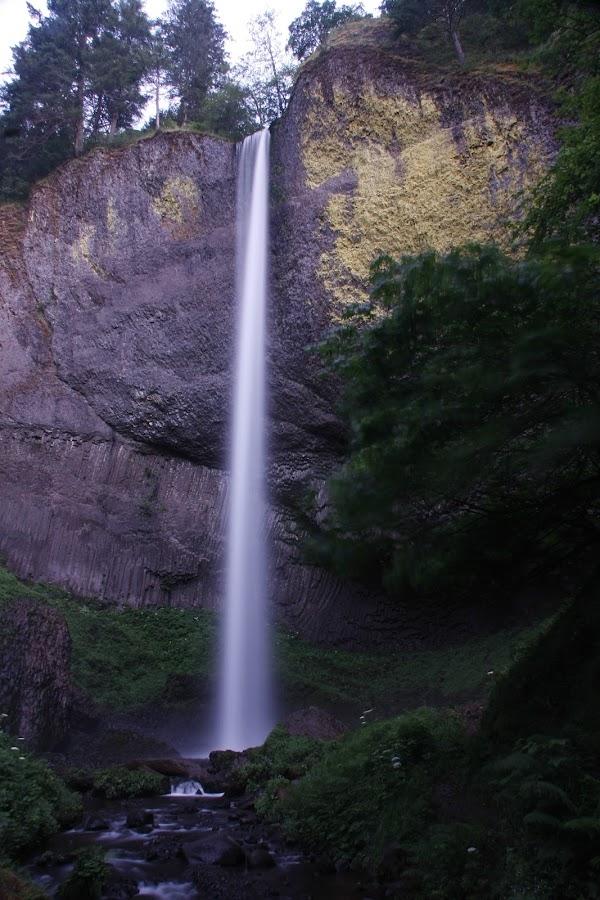 Latourell Falls, Oregon by Larry Chipman - Nature Up Close Water (  )