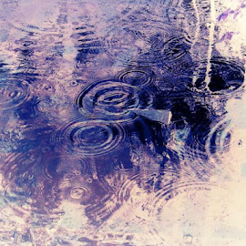Puddles by Patricia Crawford - Nature Up Close Water (  )