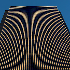 Newyork building by Vasanth Photographer - Buildings & Architecture Office Buildings & Hotels ( tower, building, buildings, lines, architecture,  )