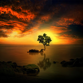 by Daniel Chang - Landscapes Waterscapes