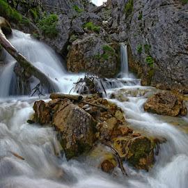 Silberkarklamm by Dieter Groschopfer - Landscapes Waterscapes ( limestone, water, wood, waterscape, waterfall, creek, rock, flow )