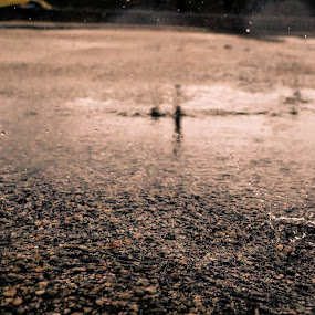 Rain Drop by João Pedro Ferreira Simões - Abstract Water Drops & Splashes ( water, asphalt, drop, ground, road, rain )