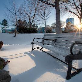 Riverfront Park, Little Rock Arkansas by Joel Thompson - City,  Street & Park  City Parks ( little rock, cold, park, bench, color, color photo, street, snow, park bench, snowy, arkansas park, city, arkansas, riverfront park )