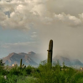 by Tom MostlyGerman - Landscapes Cloud Formations