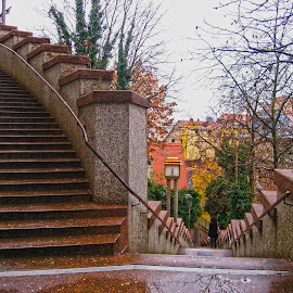 by Alenka Predic - Buildings & Architecture Architectural Detail