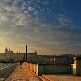 by Irena Brozova - City,  Street & Park  Vistas