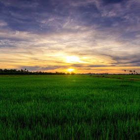 HDR by Mohd azizir Senang - Landscapes Prairies, Meadows & Fields