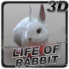 Life of Rabbit
