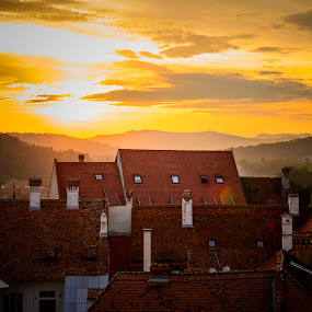 Medieval Gold  by Andreea Alexe - Landscapes Sunsets & Sunrises ( orange, townscape, houses, sighisoara, sunset, from above, roofs, romania, golden hour,  )