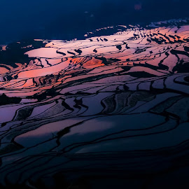 First Light  by Thomas Liesener - Landscapes Waterscapes ( terrace, waterscape, sunrise, travel, landscape, canon eos, china )