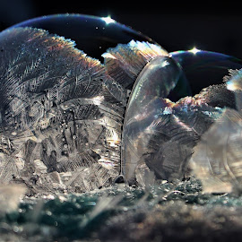 Double Bubble by RichandCheryl Shaffer - Abstract Macro (  )