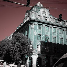 Timisoara by Natasa Dokovska - Buildings & Architecture Architectural Detail
