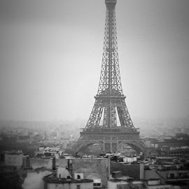 Eiffel Tower by Lauren Lane - Buildings & Architecture Statues & Monuments ( paris )