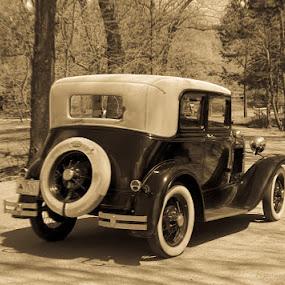 A drive through the park by Jim Harris - Transportation Automobiles ( ride, car, automobile, convertable, antique, classic, country )