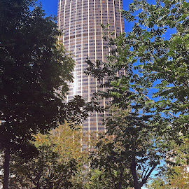 Tour Montparnasse by Dobrin Anca - Instagram & Mobile iPhone ( holiday, paris, prayer, wonderful, city )