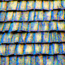 Roof Shingles by Kaye Petersen - Abstract Patterns ( abstract, roof, pattern, west virginia, shingles, babcock state park,  )