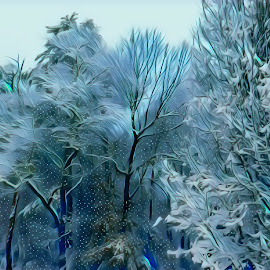 Winter Snow by Gia Gee - Digital Art Things ( winter snow, winter nc, winter, snow, winter western nc )