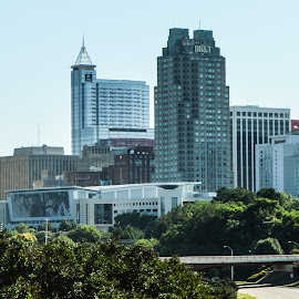 City Of Raleigh by Thomas Shaw - City,  Street & Park  Skylines ( skyline, sky, highway, skyscrapers, high rise, buildings, trees, cityscape, raleigh, downtown, city, north carolina )