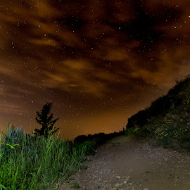 Night Path by Jeff Harmon - Landscapes Starscapes ( clouds, mountain, utah, path, night, landscape, starscape )