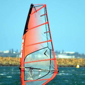 Sailboarder 40.jpg