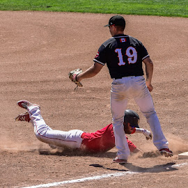 Safe On First by Garry Dosa - Sports & Fitness Baseball ( sliding, sports, teams, black, tournament, spring, red, outdoors, action, baseball, competitive, movement, base )