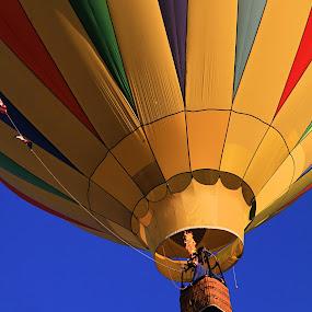 Flamin' by Jen Millard - Transportation Other ( flying, hot, air, balloon, fire, flame )