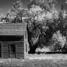 The Old Farmhouse by Richard States - Black & White Landscapes ( farm, old, derelict, old west, landscape, abandoned )