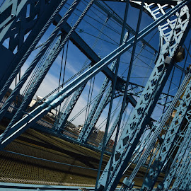 Engineering. by John Berry - Buildings & Architecture Bridges & Suspended Structures