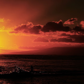 Hawaii Nei  by Jhonny Rox-Hollywood - Landscapes Beaches ( jhonny, comic, photographer, photography, rox hollywood,  )