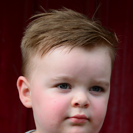 are you serious by Diane Davis - Babies & Children Child Portraits ( modeling, boy )