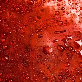 Red Drops by Lakshya Sharma - Abstract Water Drops & Splashes ( #drops #water #abstracts #red #water,  )